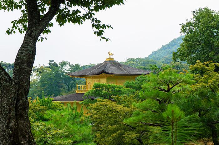 KyotoGolden07.jpg