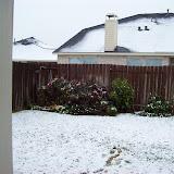 Snow Day - 101_5976.JPG