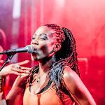 aFESTIVALS 2018_DE-AfrikaTage_04_bands_ALBOROSIE & SHENGEN CLAN_web0400.jpg