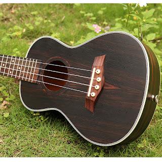 đàn ukulele andrew tenor