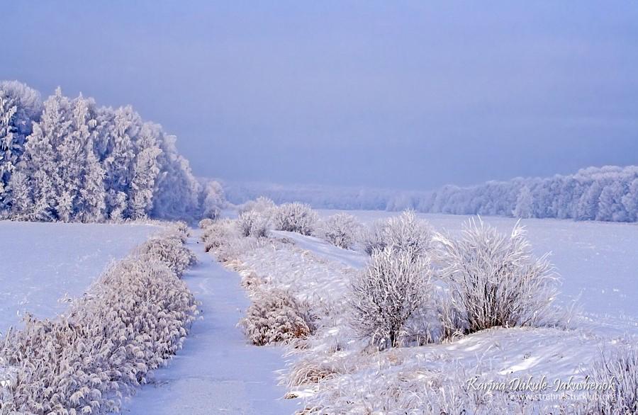 Зимняя сказка на лугах Дундуру