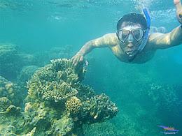 Pulau Harapan, 16-17 Mei 2015 Olympus  25