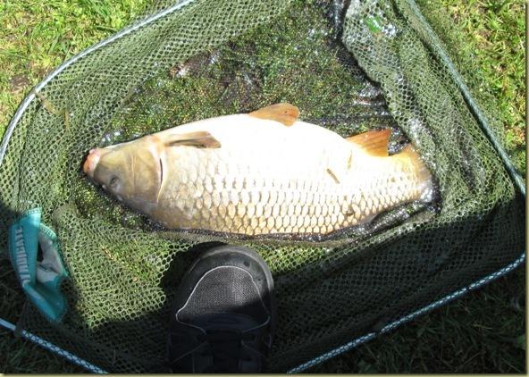5 June Fishing 1