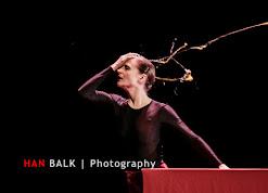 Han Balk Wonderland-7832.jpg