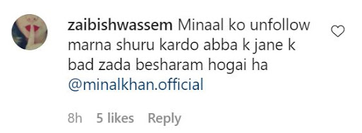 Minal Khan and Ahsan Mohsin Ikram swimming pool video
