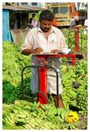 DSC_0017_keralapix.com_banana market