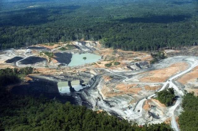 Perusahaan Luhut Tinggalkan 50 Lubang Tambang di Ibu Kota Baru