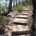 Sandstone steps (201724)