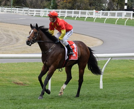 mcewen stakes_russian revolution 5