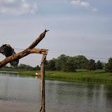 Aacadia tree jump for Polaroid Action Cams shot by Ryan Castre. - _MG_1340-6.jpg