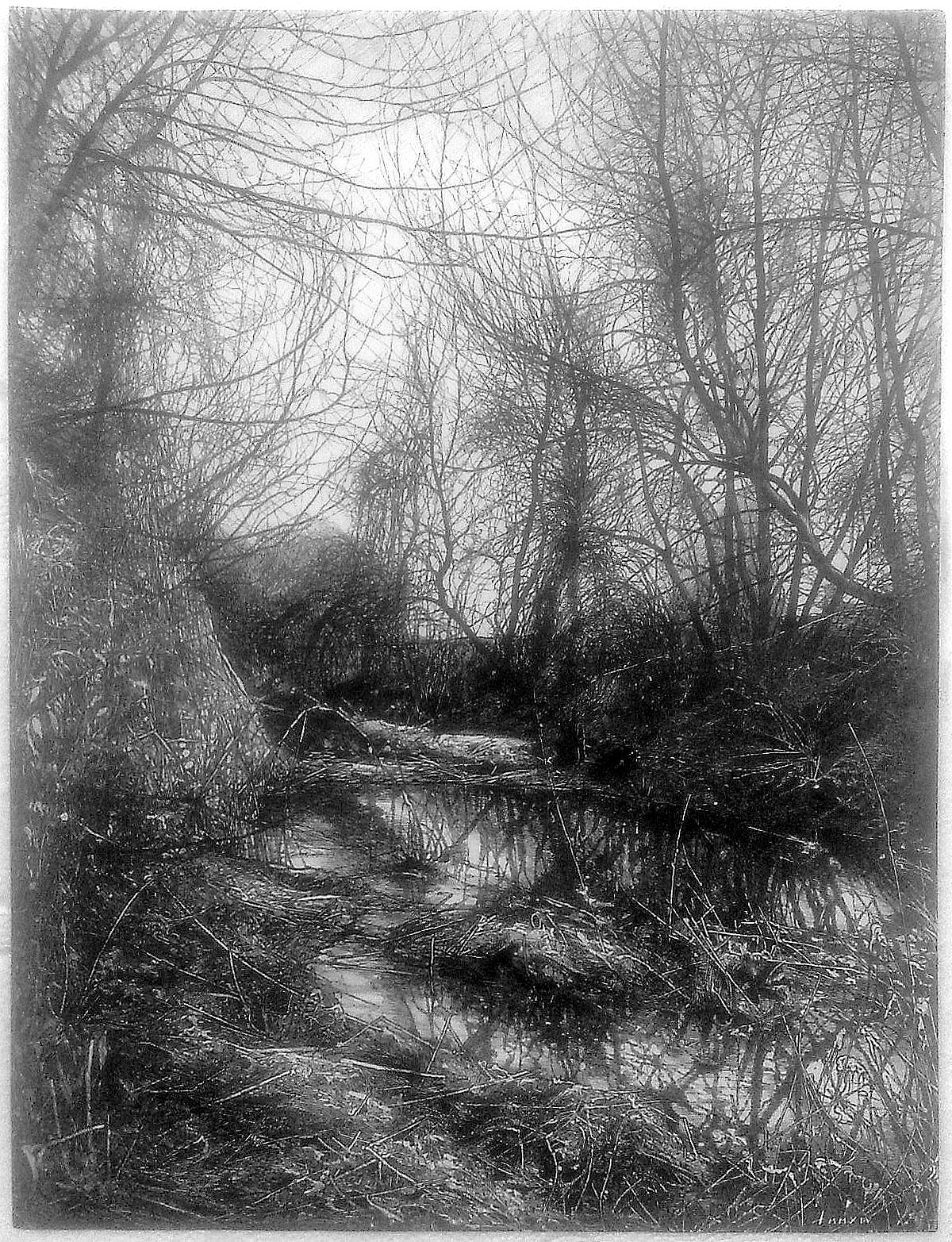 THE LATOR CREEK IN THE LOWLANDS I - Illustration (landscape), MMXIII-MMXIV - Ink on carton - 18,11 X 13,78 in.jpg