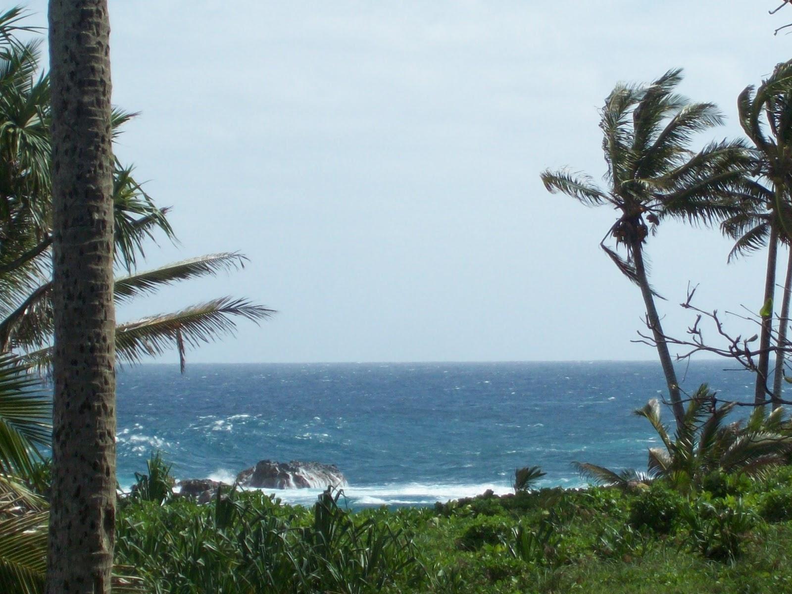 Hawaii Day 5 - 114_1518.JPG