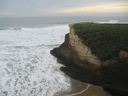California Coast - Wilder State Park, Santa Cruz.