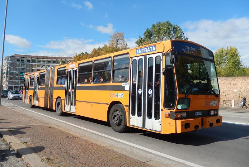 treviso mom mobilit di marca pagina 52 busbusnet