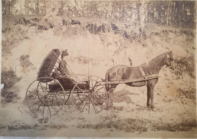 Billard Ella Terry photo in buggy