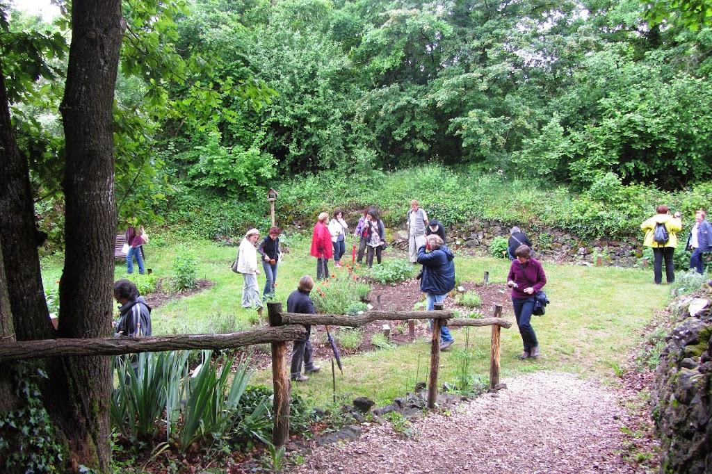 Jardí botànic de les àvies al Parc de Pedra