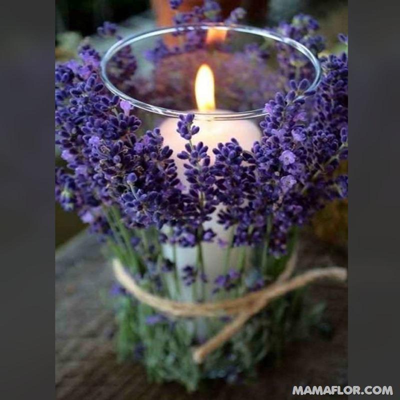 Centros-de-mesa-para-Boda-con-plantas-aromaticas---4