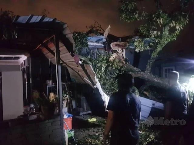 Suami isteri cedera dihempap pokok tumbang