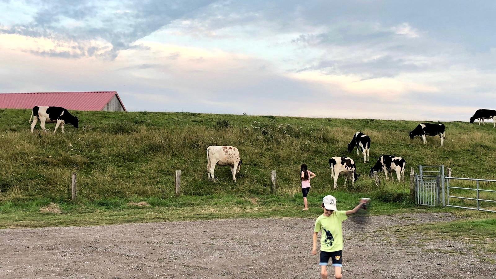 Dänemark-Rundreise im Sommer 2020: Stellplatz in Lunden an der Eider