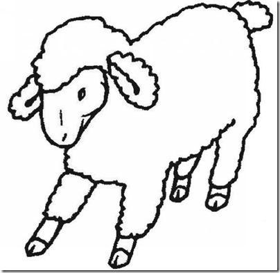 00 - ovejas para colorear (6)