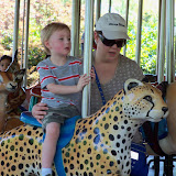 Houston Zoo - 116_8577.JPG