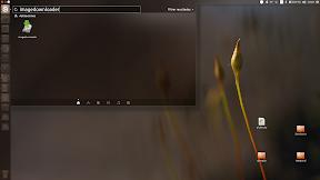 Descargar todas las imágenes de una web con ImageDownloader - Dash