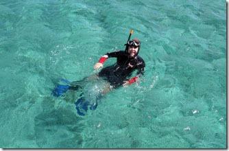 abrolhos-mergulhando