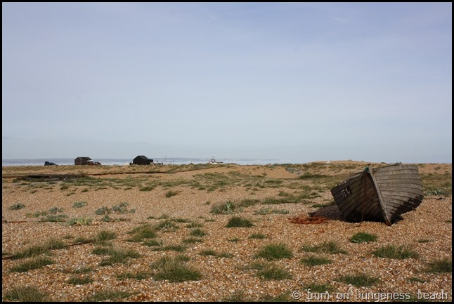 Sparse on Dungeness beach