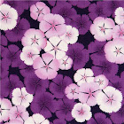 Kokka-fabric-with-purple-cherry-blossoms-flower-Japan-168426-1.jpg