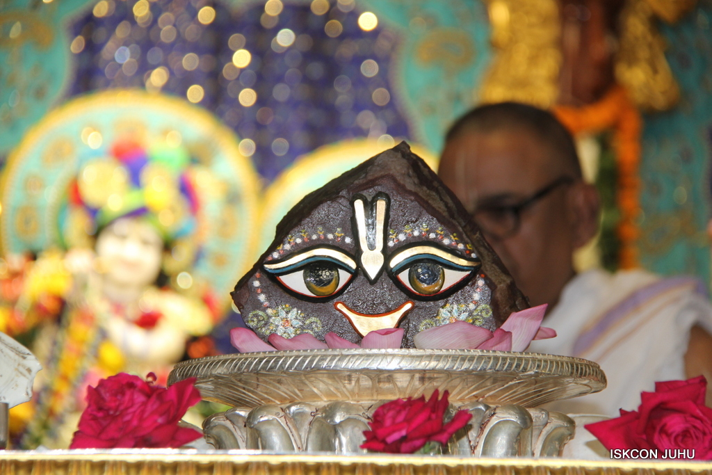 Govardhan Abhishek Darshan  At ISKCON Juhu on 31st Oct 2016 (4)