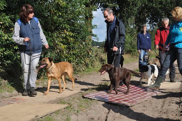 Survival voor Baas en Hond 2012 - DSC_0171.JPG