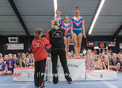 Han Balk Gelderland 2016-8493.jpg