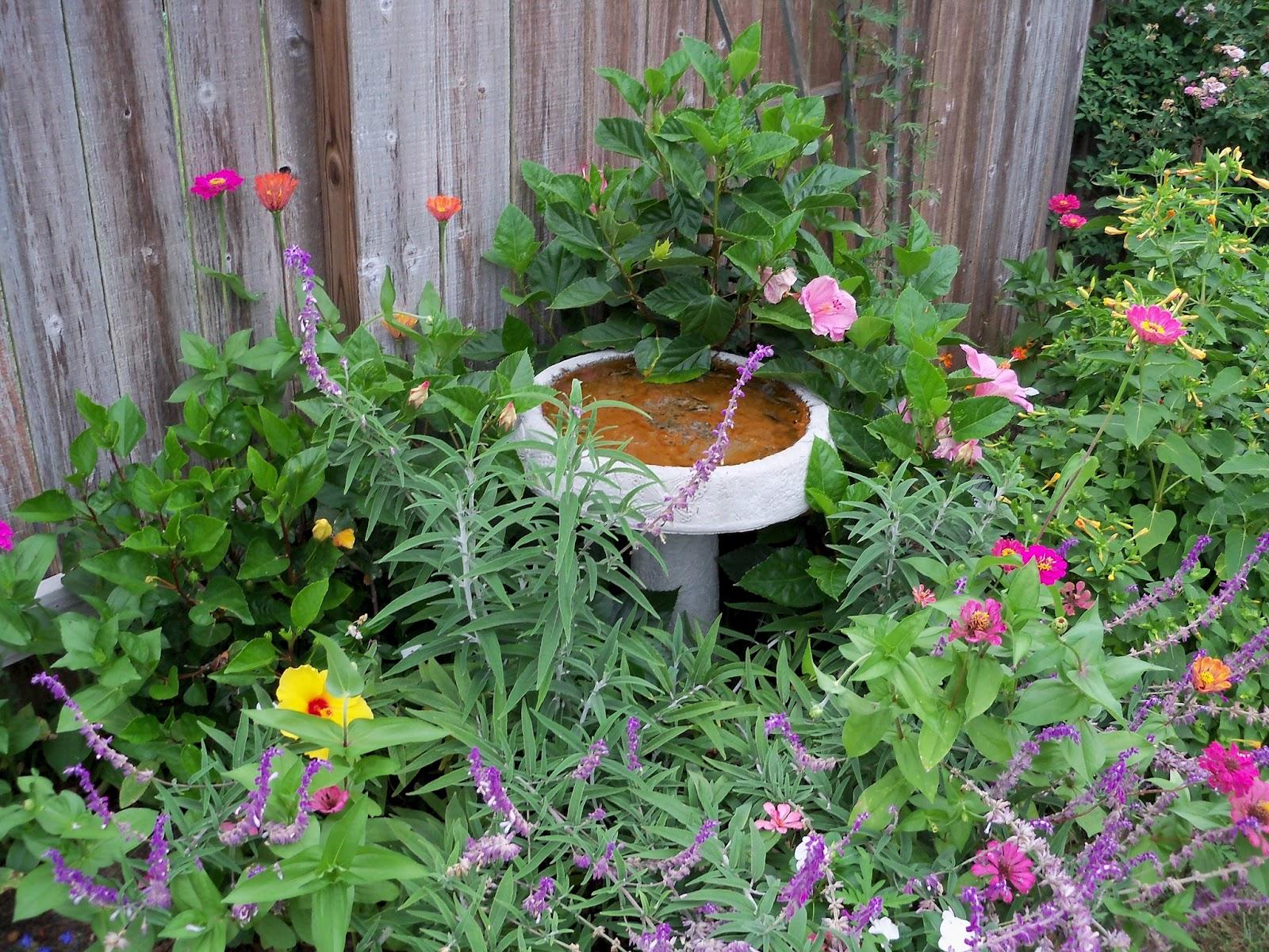 Gardening 2012 - 115_2110.JPG