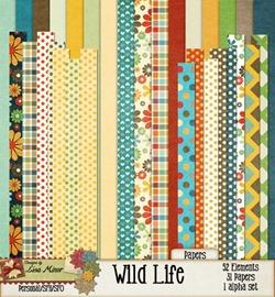 wildlife_02