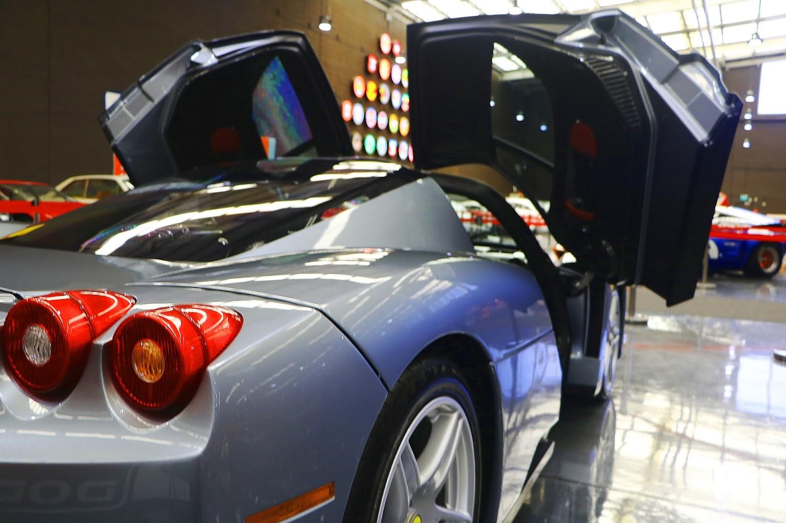 Ferrari Enzo (20).jpg