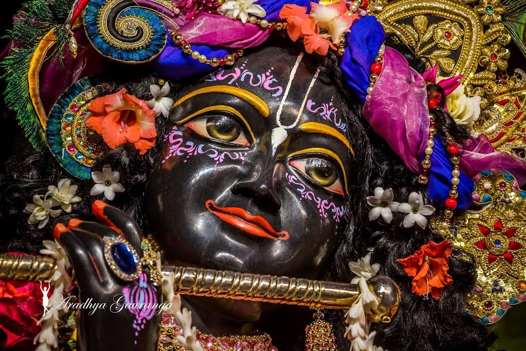 ISKCON Mayapur Deity Darshan 20 Jan 2017 (7)