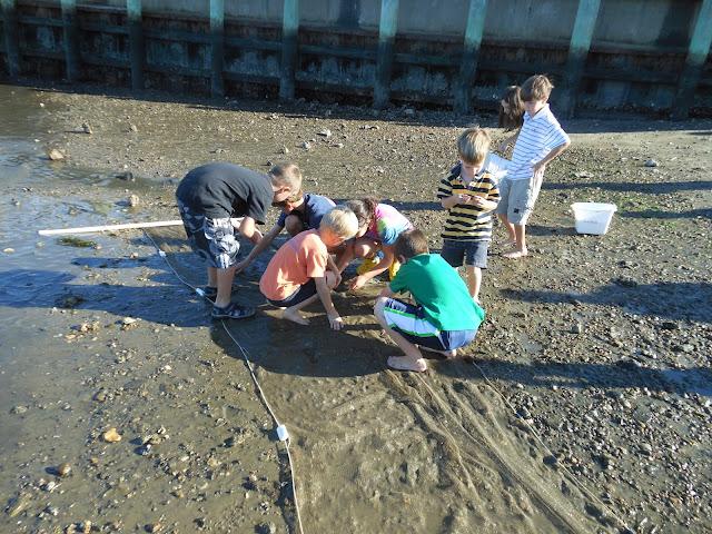 2012 Harbormasters Beach trip - Sept%2B2012%2B032.JPG