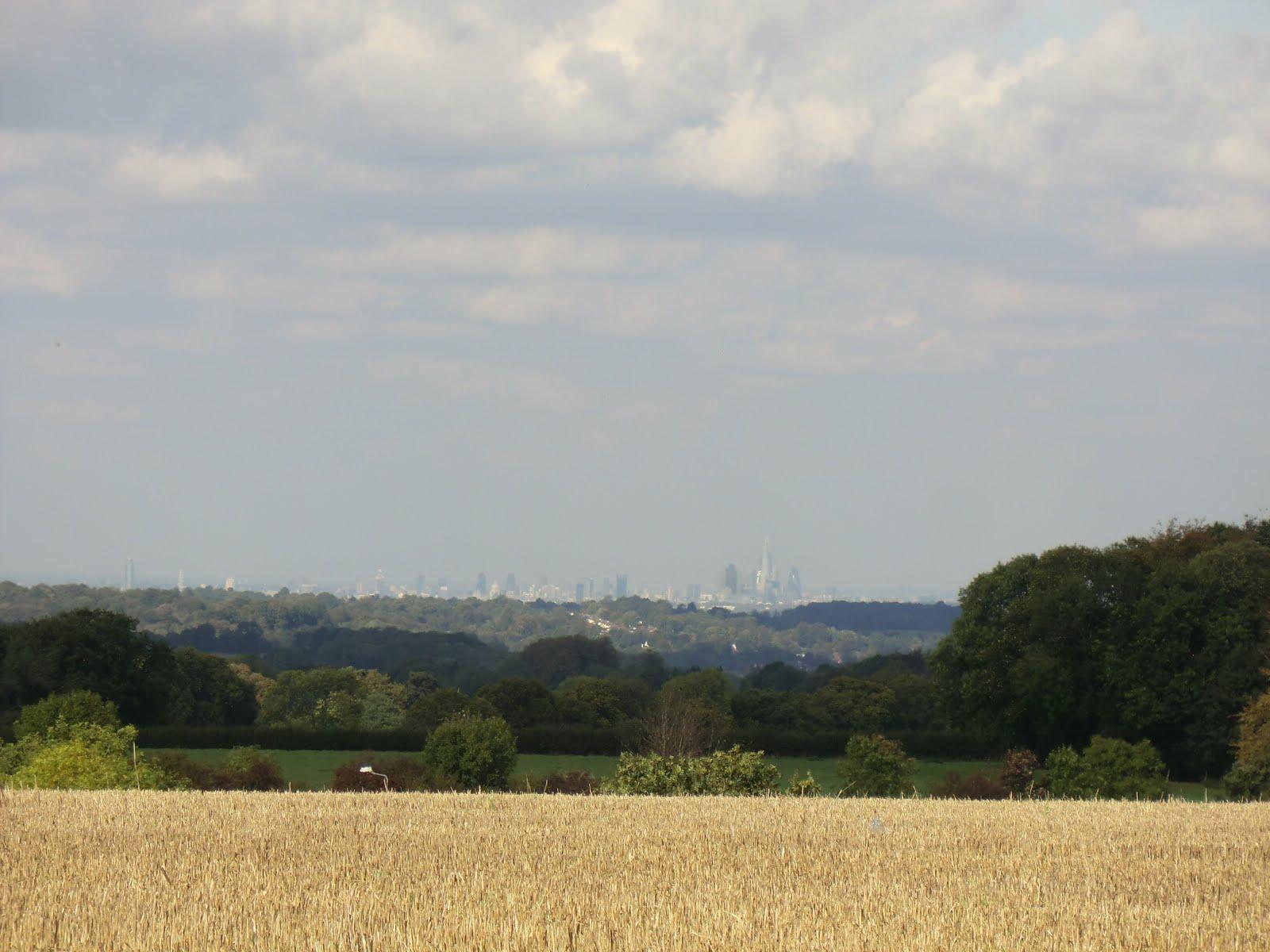 CIMG5124 The London skyline