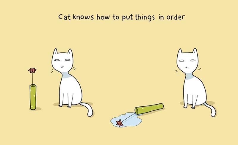 21 Alasan Kenapa Bagusnya Membela Seekor Kucing, Cats, Meow, Why Need Cats, Rahsia Kucing, Kucing Peliharaan, Kucing Manja, Kucing Liar, Comel, Gambar Kartun Kucing, Cats Pictures