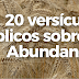 20 versículos bíblicos sobre la Abundancia.