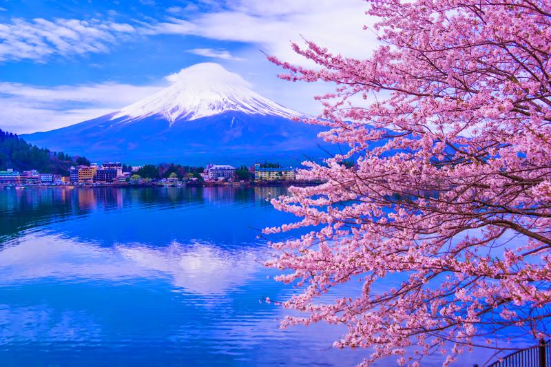 Lake kawaguchiko, cherry blossoms, Mt Fuji, Ubuyagasaki 2