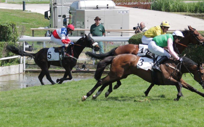 Photos Auteuil 17-05-2015 Journée du Grand Steeple IMG_0039