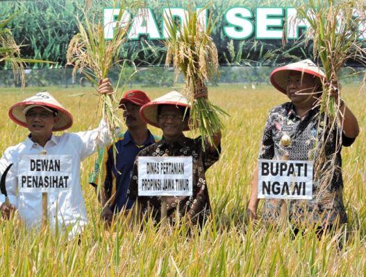 """PJ Bupati Ngawi: """"Mari kita pertahankan predikat daerah Ngawi sebagai lumbung padi nasional ini,"""""""