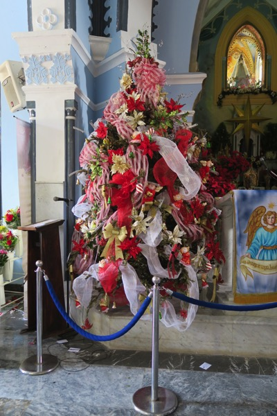 Shrine Tree