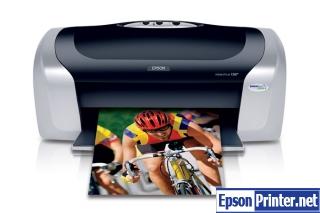 How to reset Epson C88 printer