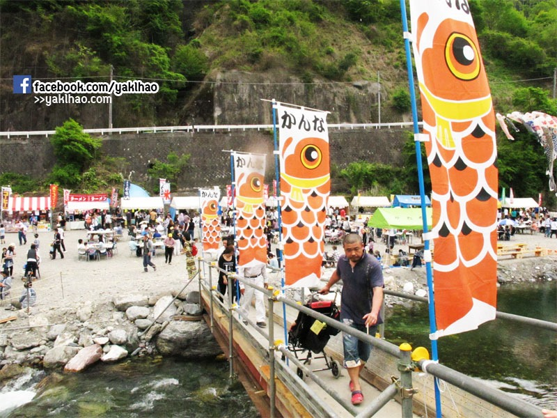 carp-fish-flag-fes-08