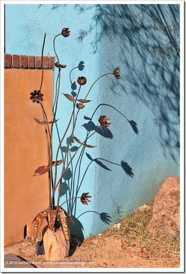 151229_Tucson_0027