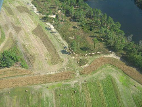 Aerial Shots Of Anderson Creek Hunting Preserve - tnIMG_0403.jpg