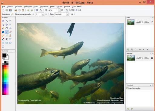 pinta-editor-immagini