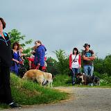 20130623 Erlebnisgruppe in Steinberger See (von Uwe Look) - DSC_3731.JPG